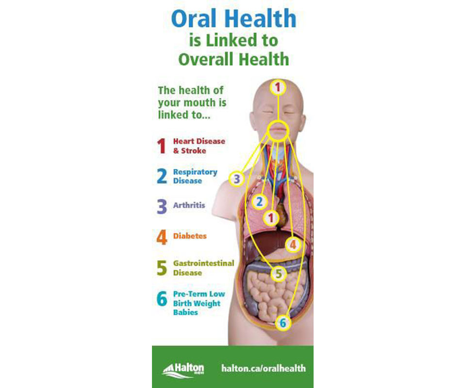 oral health is linked to overall health